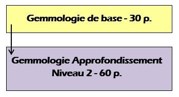 Gemmologie
